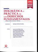 Dogmática y práctica de los derechos fundamentales
