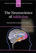 The neuroscience of addiction